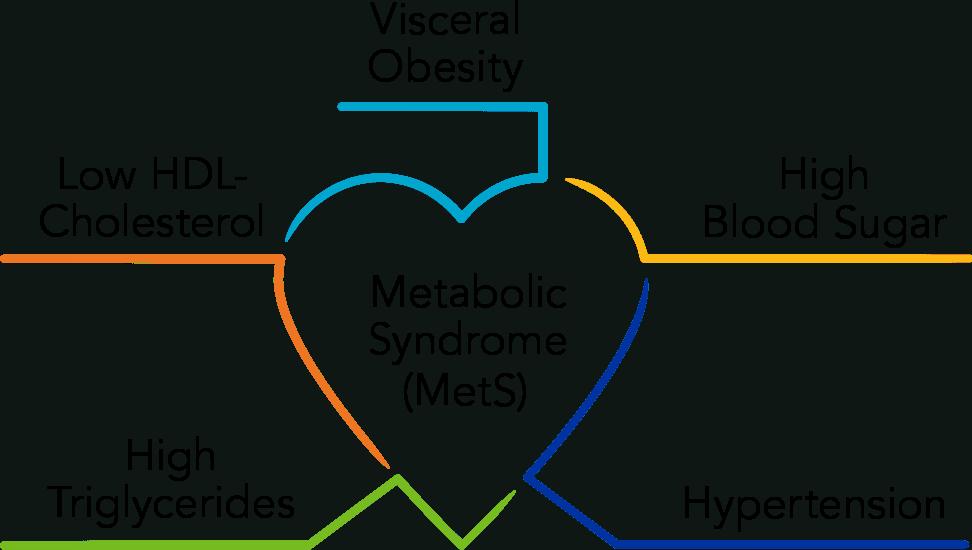 metabolic syndrome linked to osteoarthritis