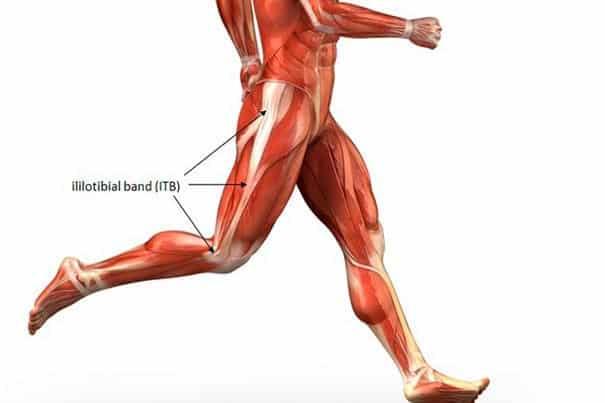 IT band anatomy