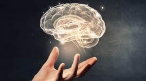 pain neuroscience education-min